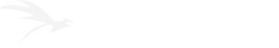 FAZISI.TVET.GE